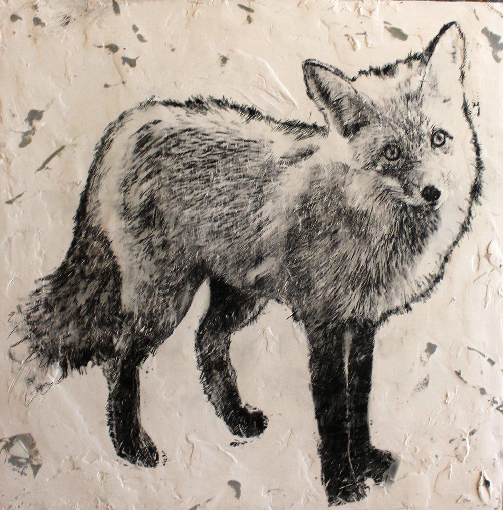 fox - OKane24 x 24  Encaustic on wood panel