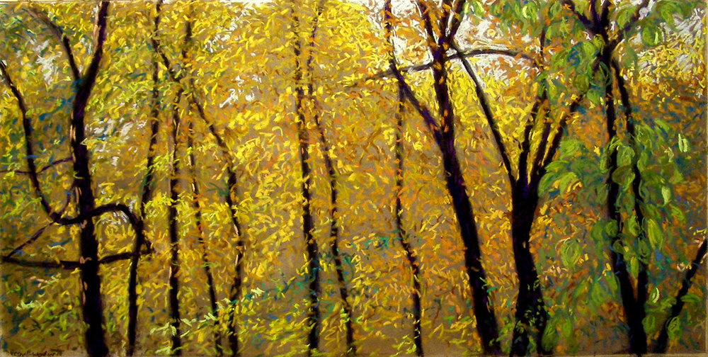 Madison arboretum - Denise Presnell18 x 36    Oil on paper