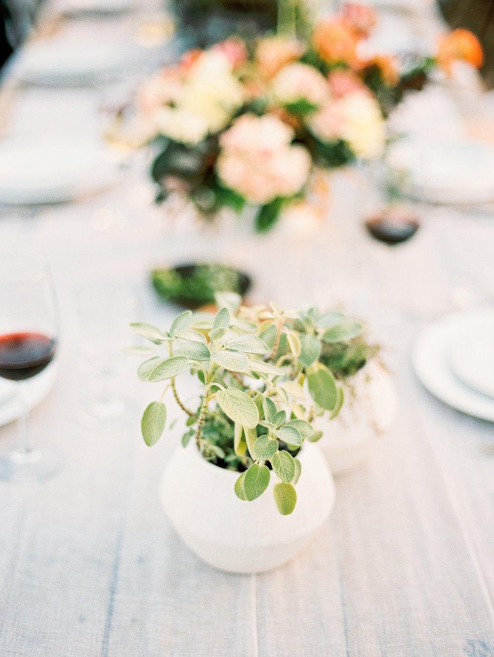 Moss Mountain Farms Wedding Arkansas_0032.jpg