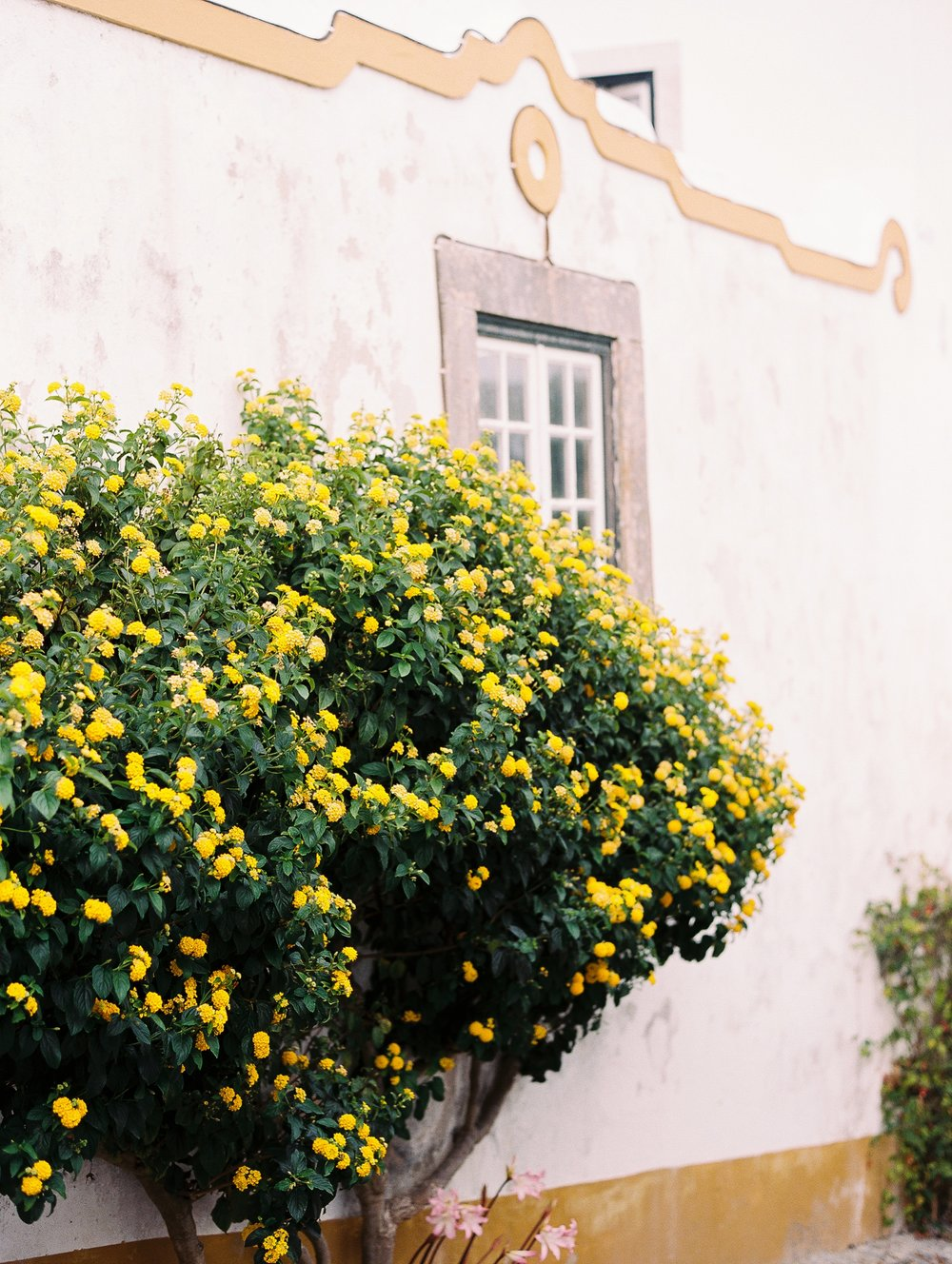 Obidos Portugal Engagement Session Photographer_0615.jpg