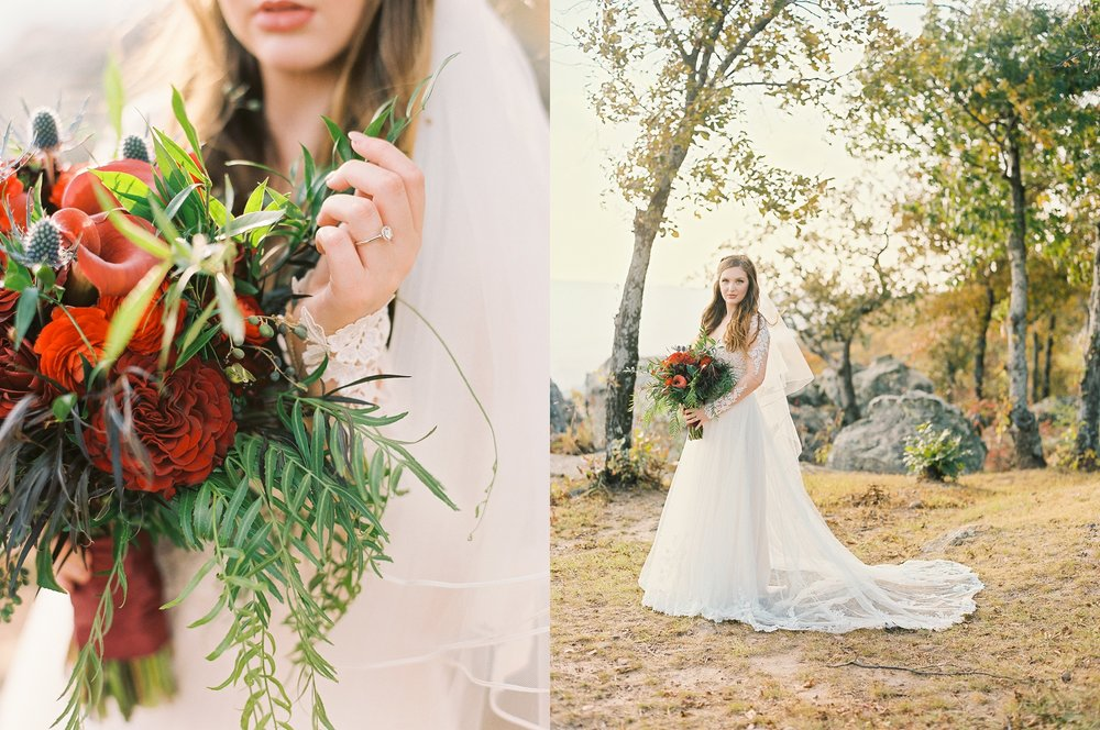 Wintry Petit Jean Mountain Bridal Session_2046.jpg