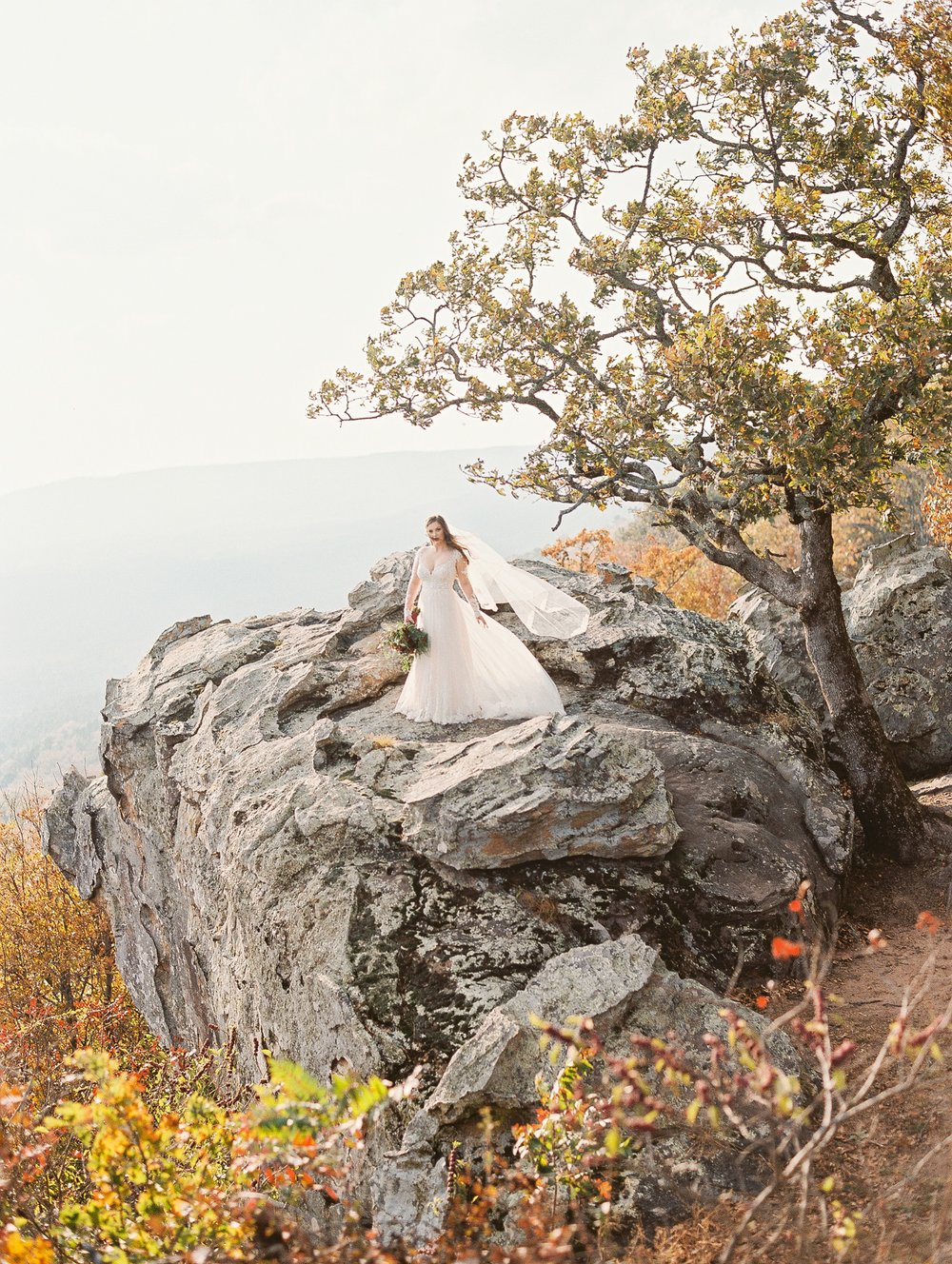 Wintry Petit Jean Mountain Bridal Session_2047.jpg