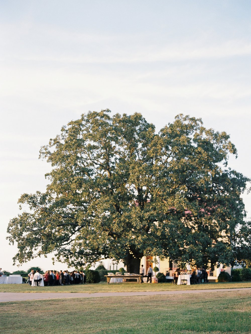 Moss Mountain Farm Wedding Arkansas_1177.jpg