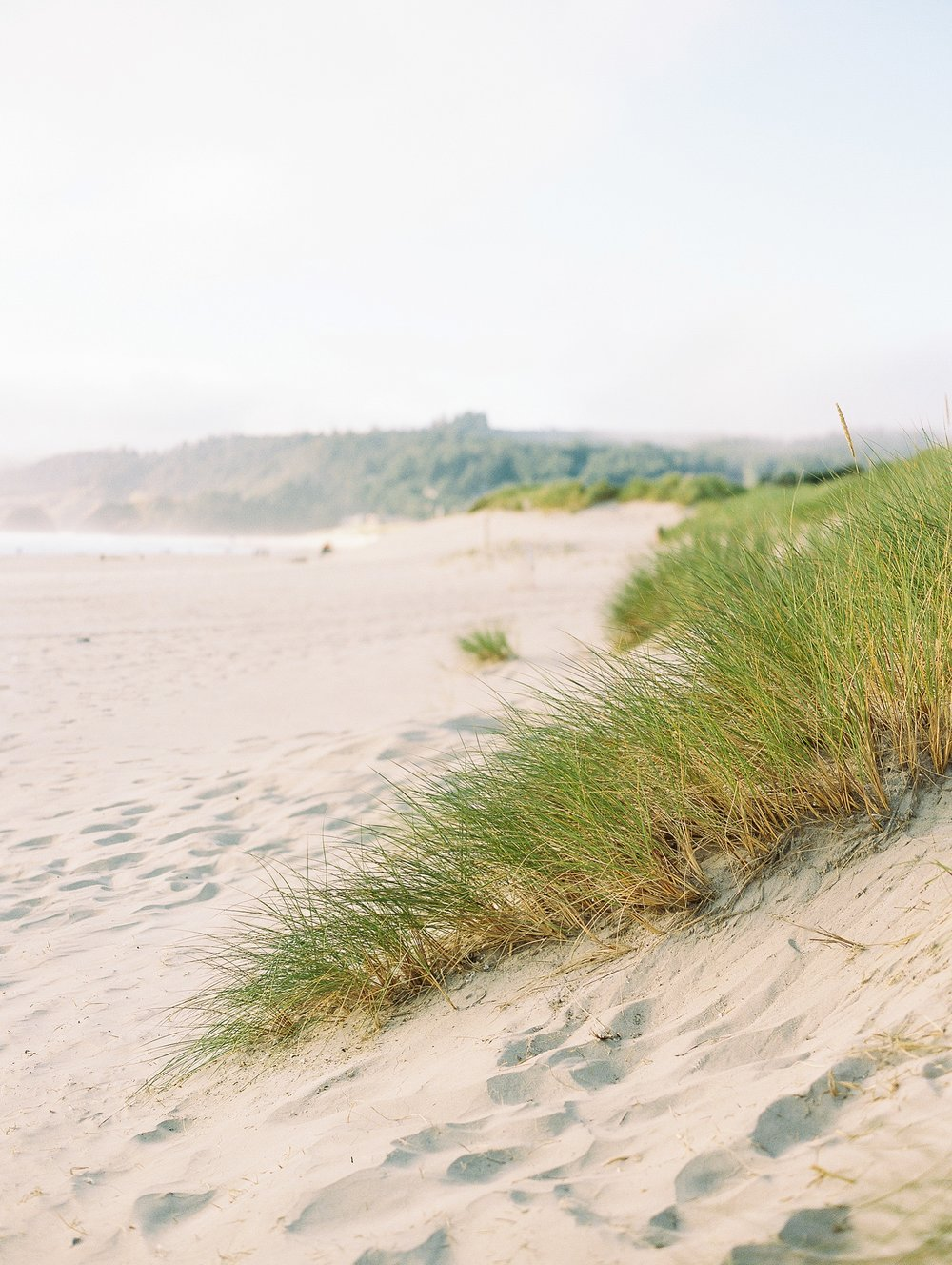 Cannon Beach Oregon Wedding Photographer_1310.jpg