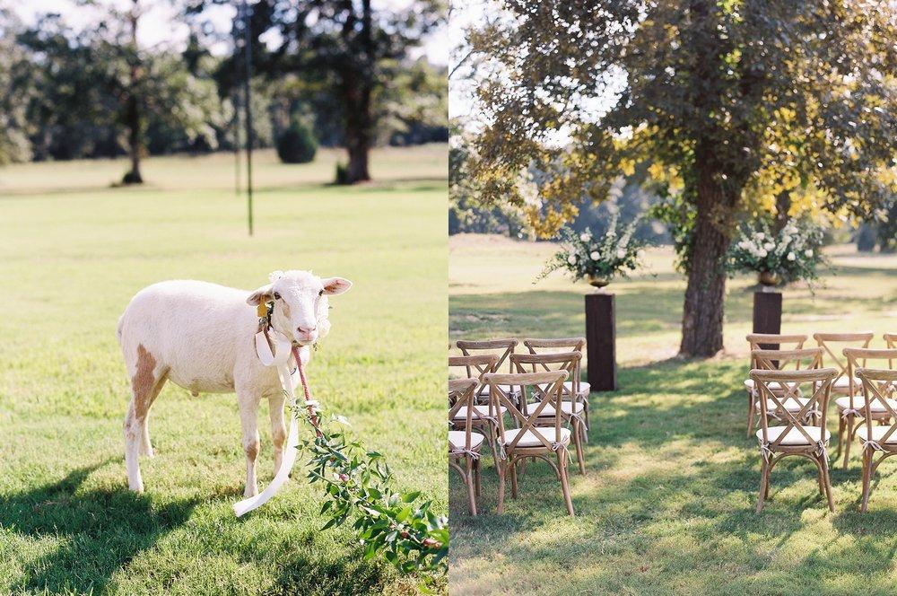 The Grandeur House Wedding Arkansas_1500.jpg