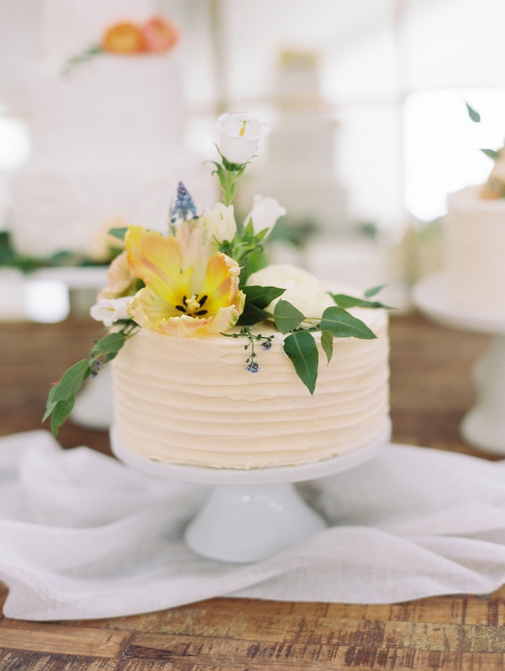 Mt Magazine Wedding Arkansas_1657.jpg
