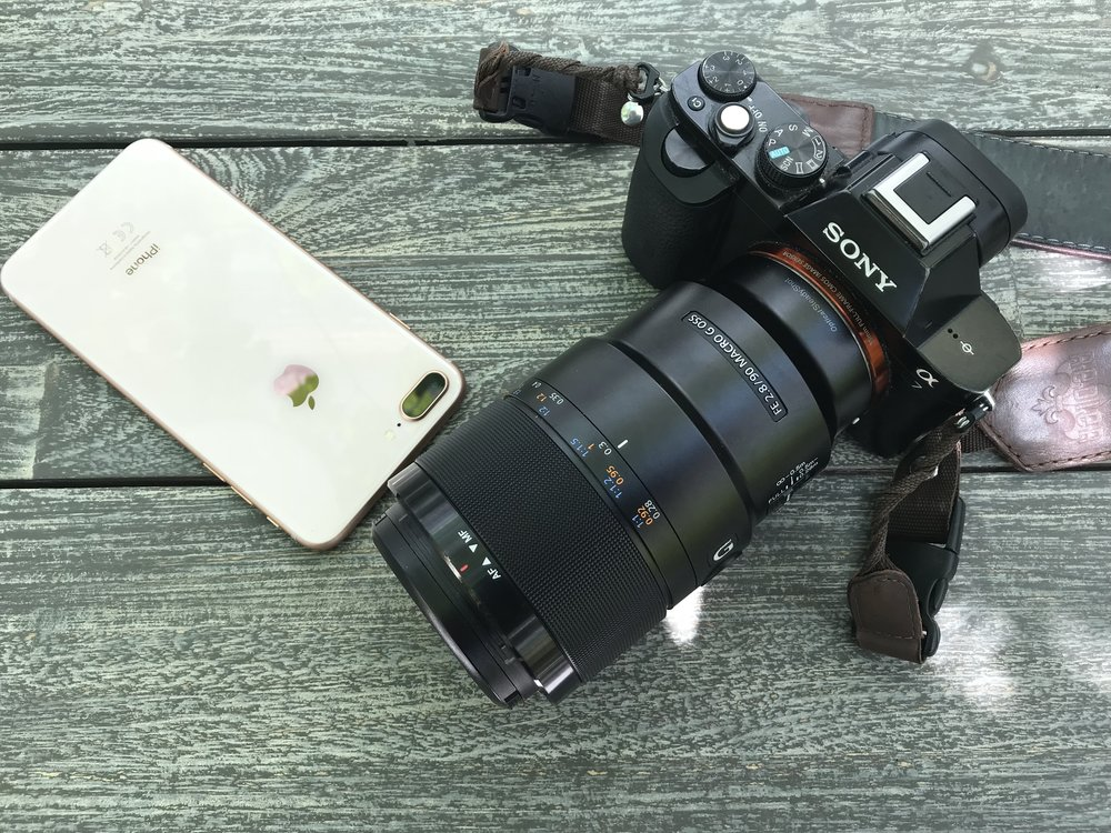 iPhone 8 Plus vs Sony A7