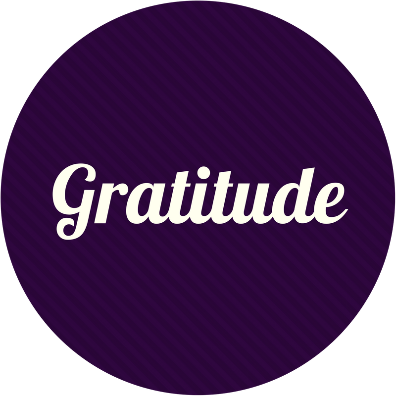 Gratitude unlocks the richness and beauty of life, and we express massive appreciation for life, learning, and experience.