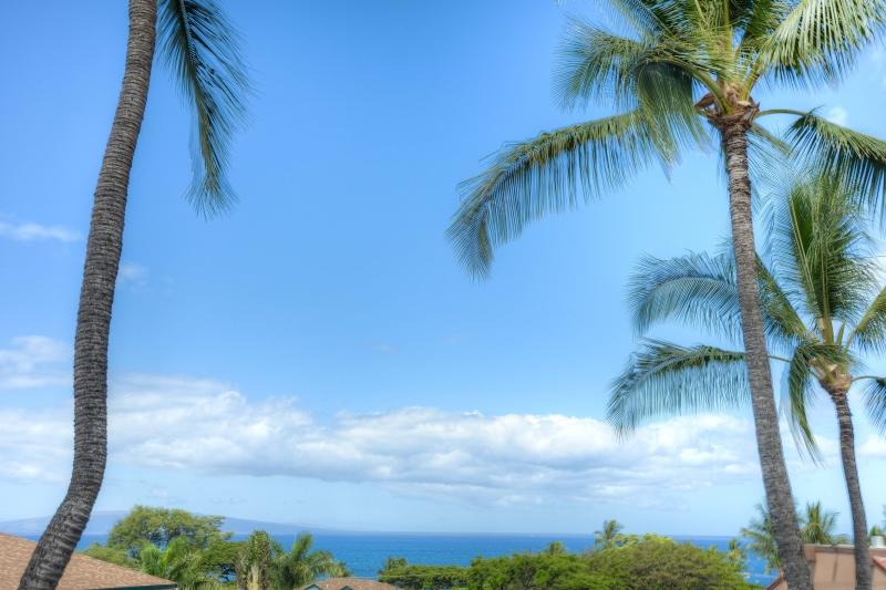 Maui-Vista-2408-maui-roost-condos-for-rent-5.jpg