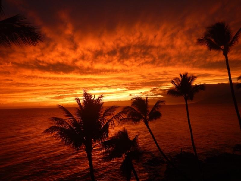 Sunset websize.jpg