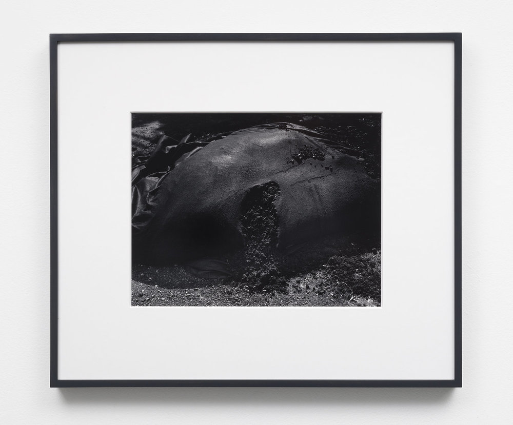 Applicant (Mark McKnight) work example 5:  Flesh,  10.25 x 13.25, selenium toned, silver gelatin print in 8 ply over-mat (18 x 21), painted wood frame, 2018
