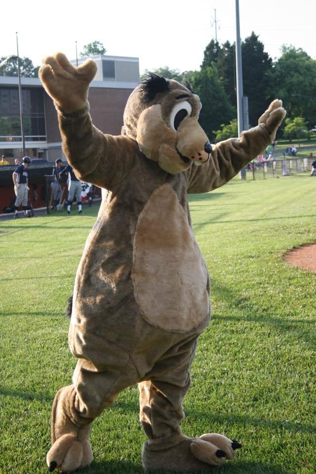 Prairieweather Lewis - Charlottesville Tom Sox