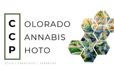 Colorado Cannabis Photo