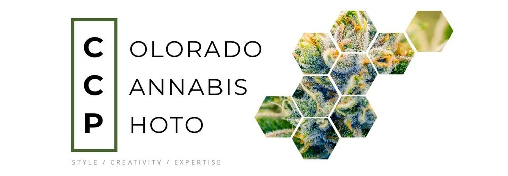 Colorado Cannabis Photo Logo