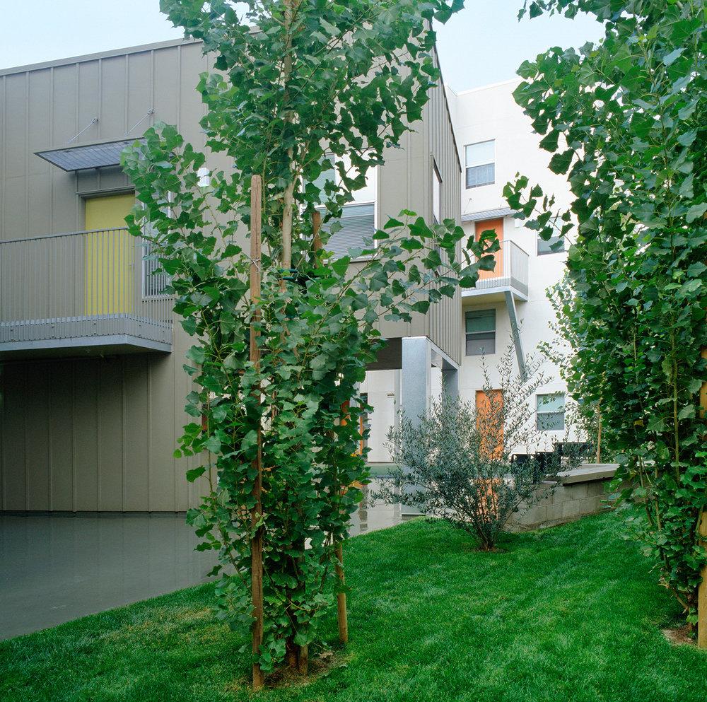 0015pc018b_garden.jpg