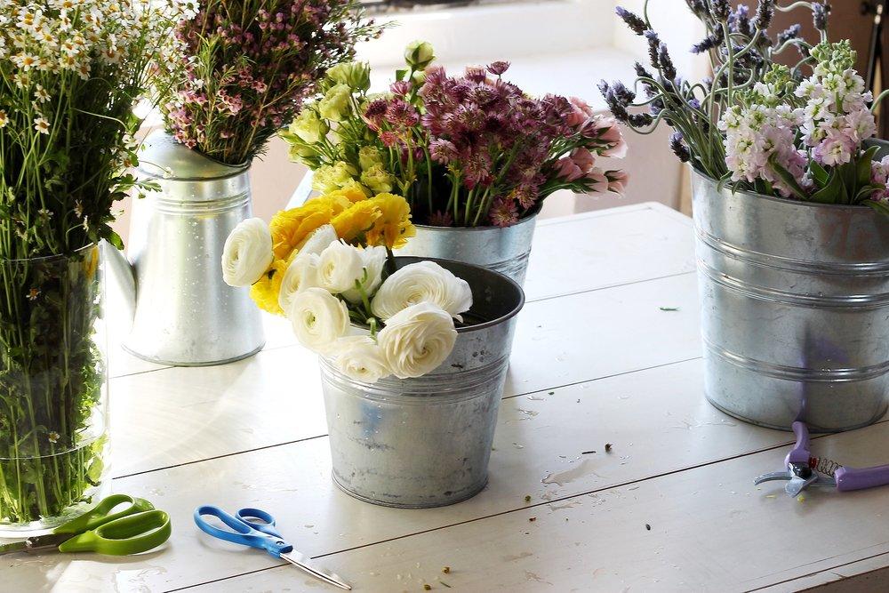 flowers-799001_1920.jpg