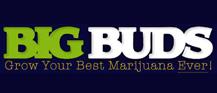 Big Buds