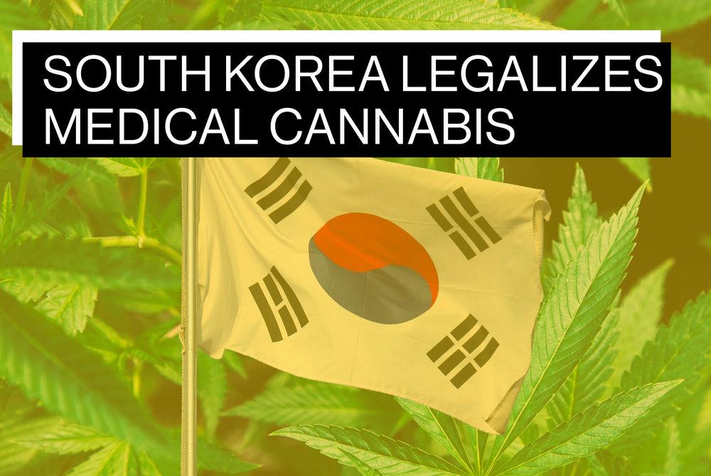 KOREA BLOG HEADER.jpg