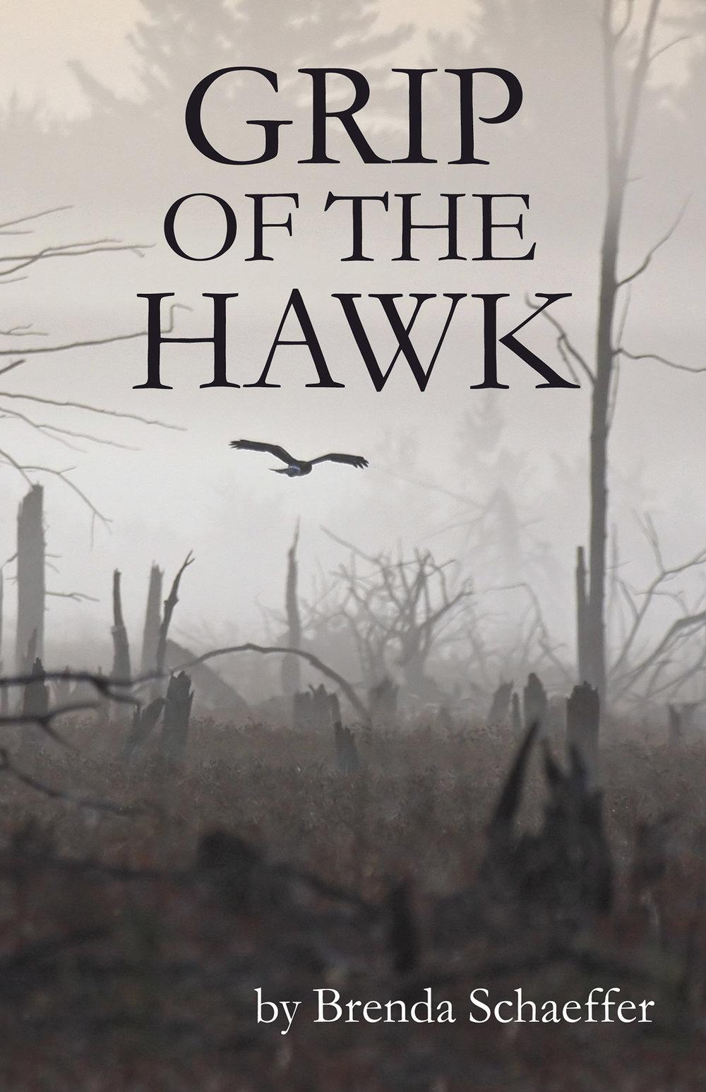 Gripof-the-Hawkcover.jpg