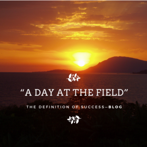 """""""A Day at the Field"""""""