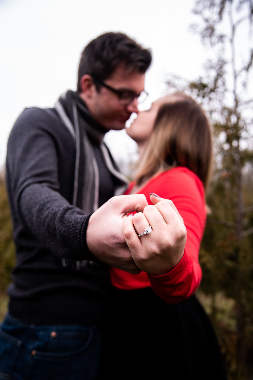 engagement (26 of 66).jpg