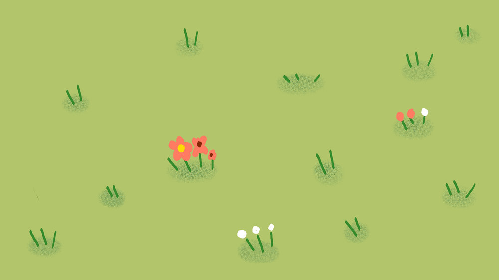 rumput.jpg