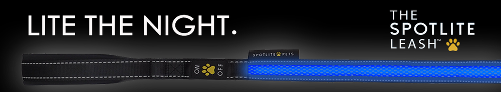 LITE-THE-NIGHT-ad-banner.png