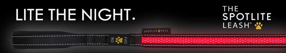 LITE-THE-NIGHT-ad-banner_red_1.png