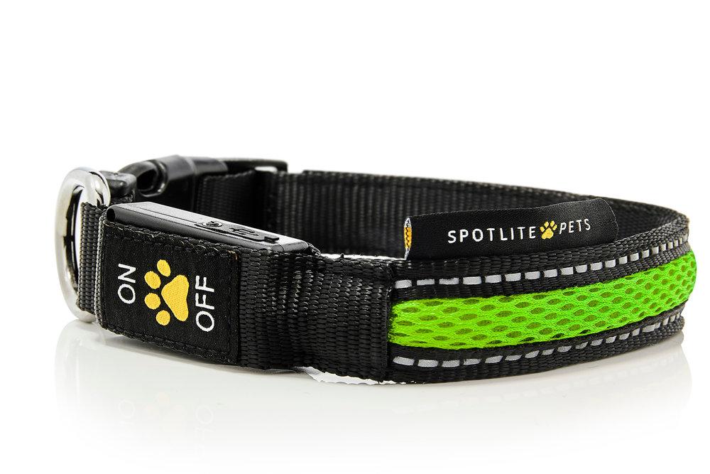 Green_Collars_Leashes_Spotlite_Pets-X3.jpg