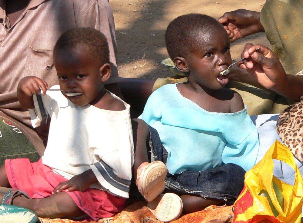 Simbabwe_Environment_Afrika__Foto_Claudia_Berker_ (22_A_).jpg