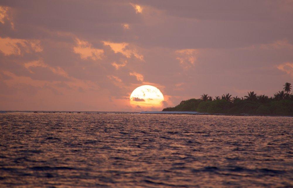 OA3 Sunset OMX