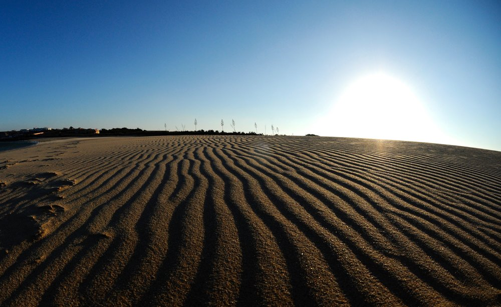 Sand dunes in Portugal