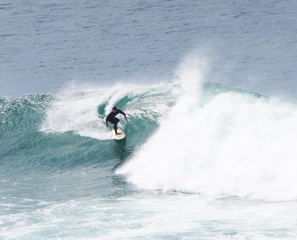 Joao surfing Autumn 2016.JPG