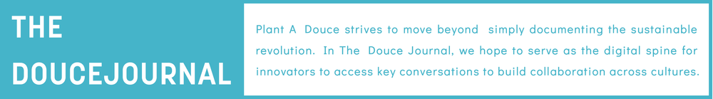 Doucemove banner-02.png