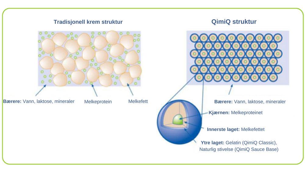 Illustrasjonen av QimiQ patentet: Melkefettet legger seg rundt hvert myseprotein og deretter et tynt lag med gelatin.