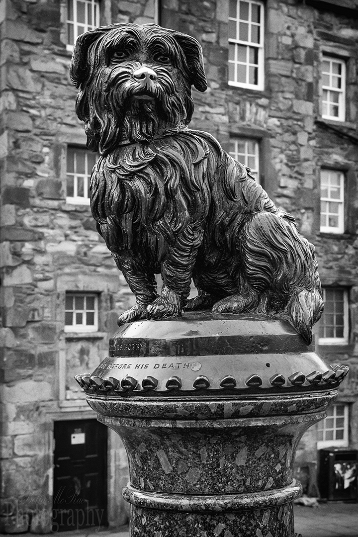 Edinburgh Photo Walking Tour Greyfriars Bobby