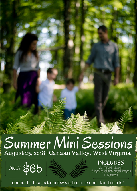 Summer Mini Sessions (1).jpg