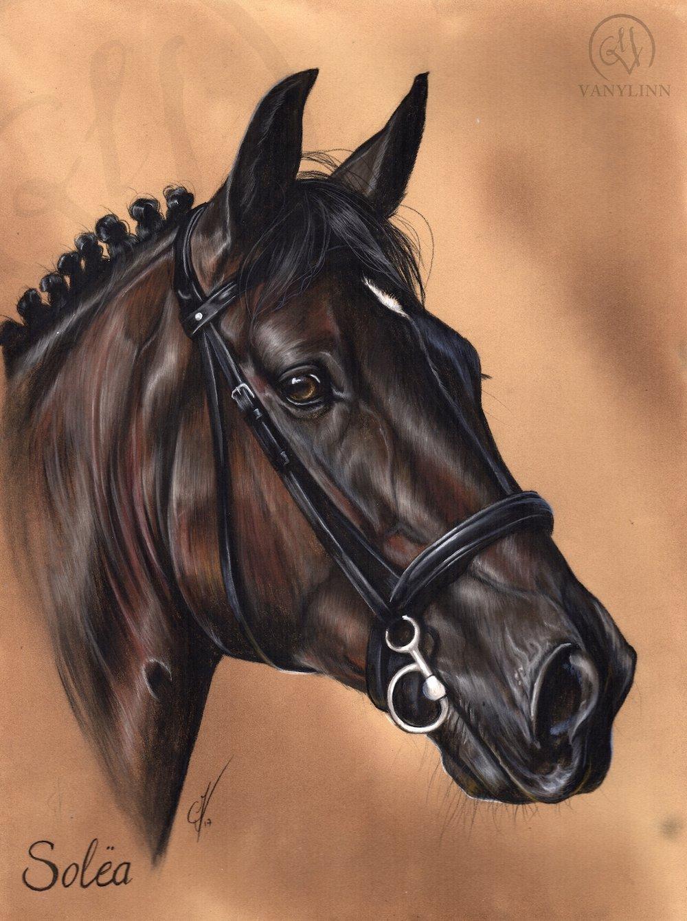 Solea dressage horse pastel realistic.jpg