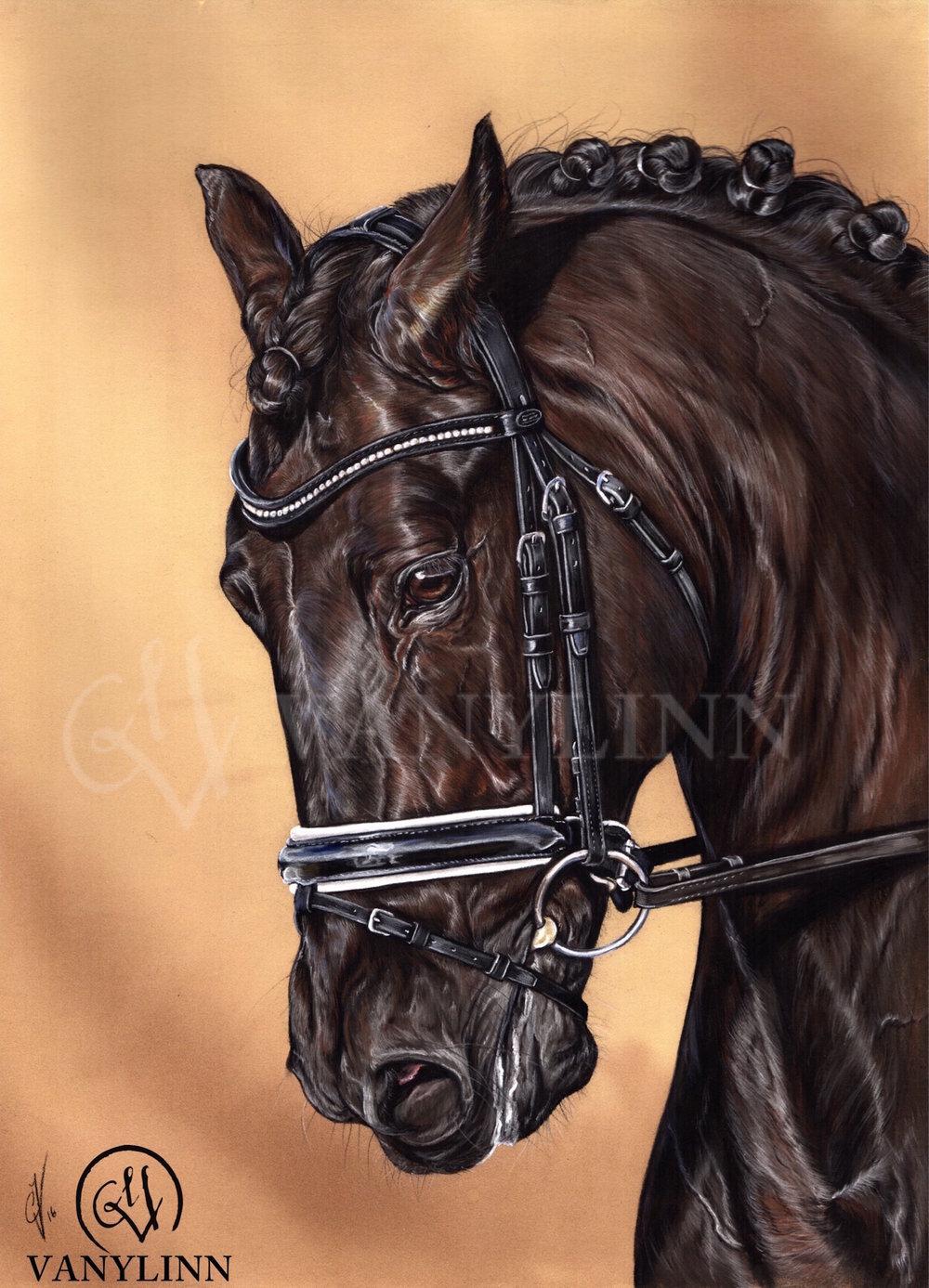Bioxido horse dressage pastel hyper realistic.jpg