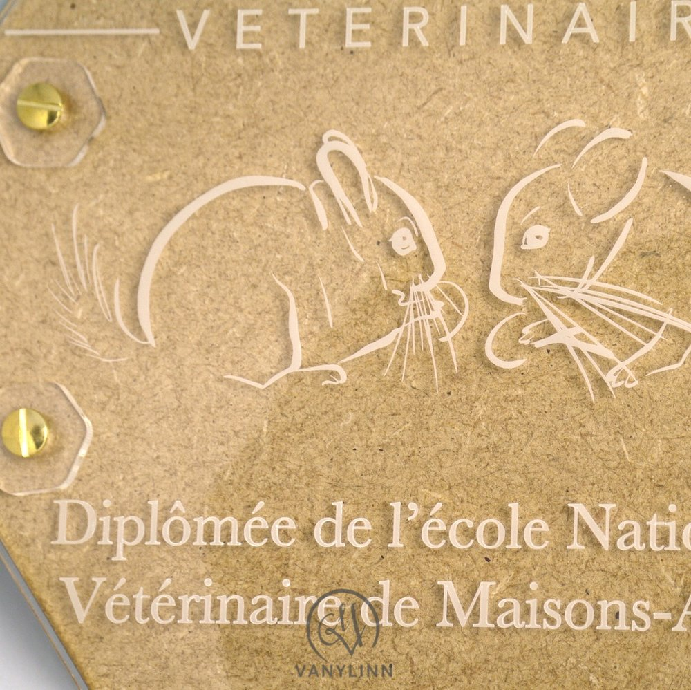 Veterinarian Plaque 1.JPG