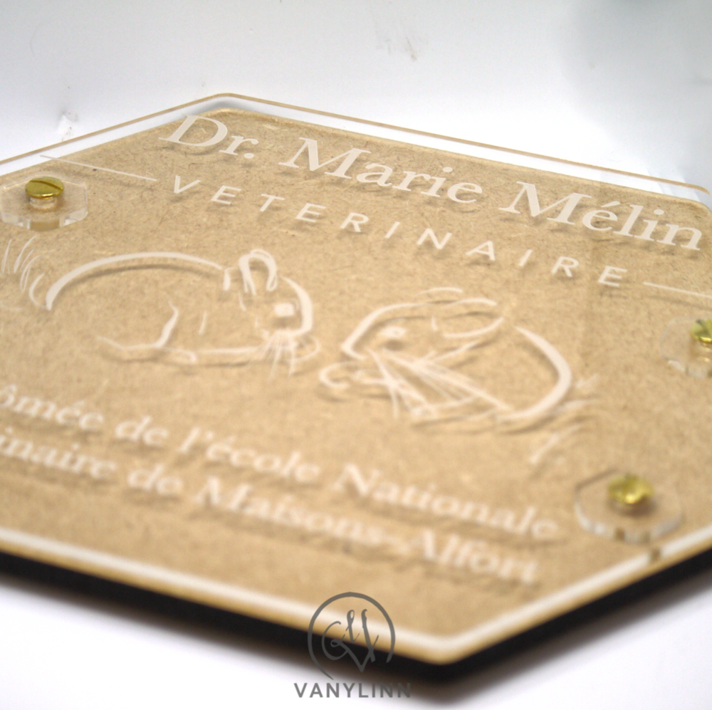 Veterinarian Plaque 2.png
