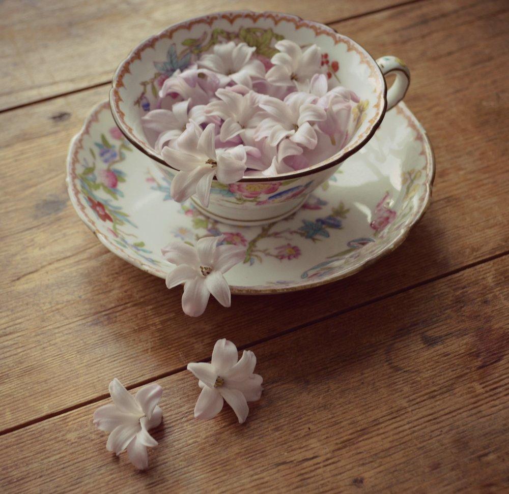 tea cup and hyacinths