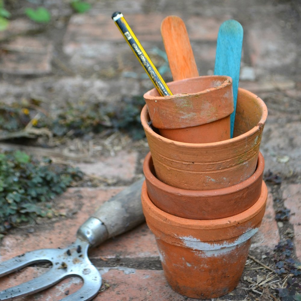 Adventures & Tea Parties Simple Stylish Makes blog post on gardening jobs for november