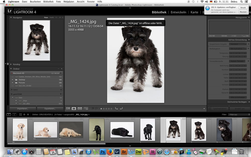 Debra Bardowicks Animal Photography