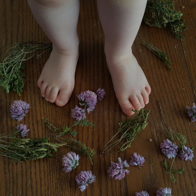 Little Feet.png