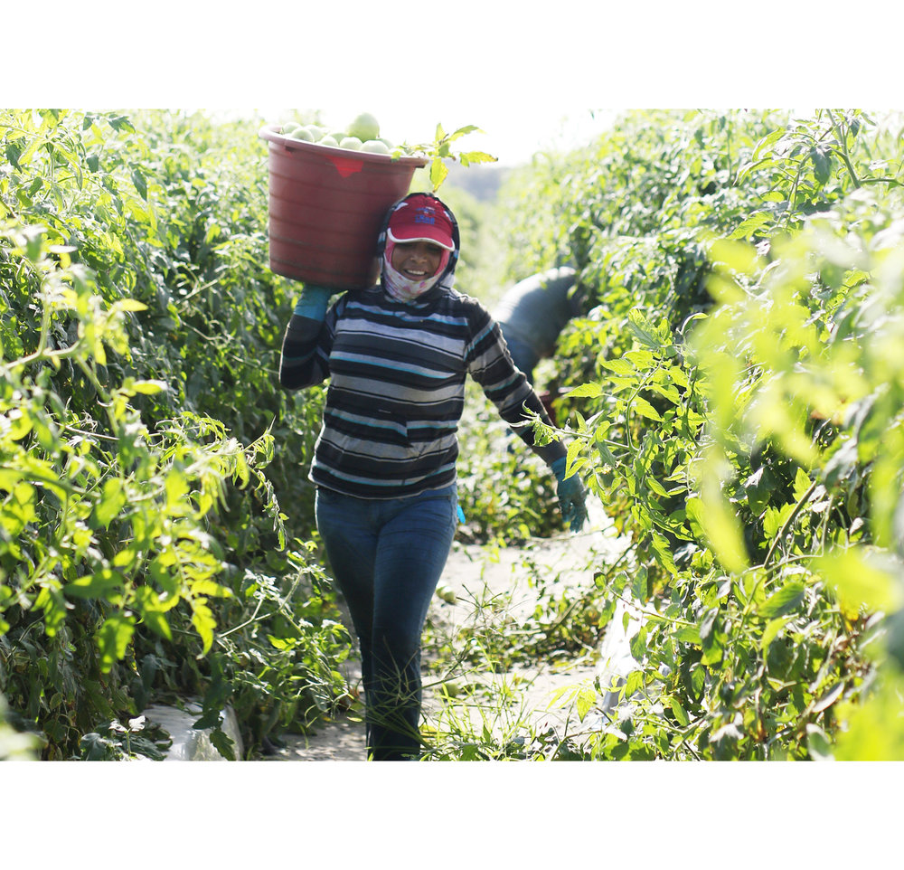 STAND WITH FARMWORKER WOMEN. -