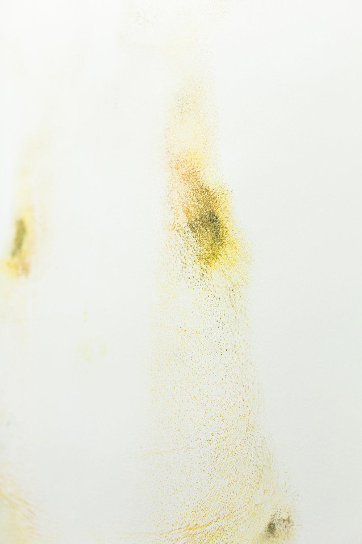 Jacqueline-Surdell-Artist-Works-on-Paper-Human-Measurements-03.jpg
