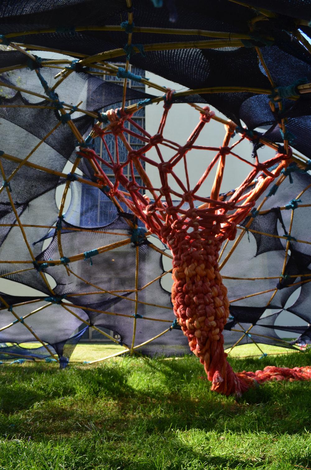 Jacqueline-Surdell-Artist-Installation-Tents-03.jpg