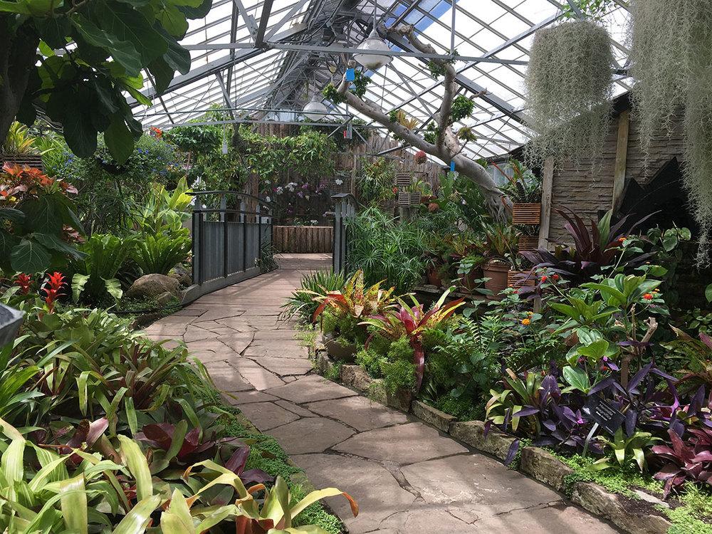 Allen Gardens 1.jpg