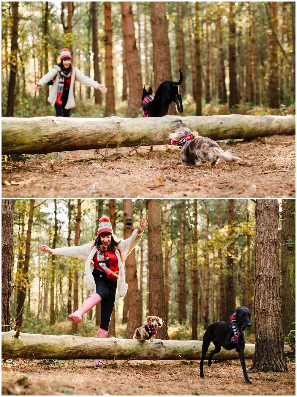 A woman jumping over a log in the woods with her two dogs